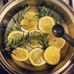 lemon-rosemary-vanilla-stove-top-potpourri